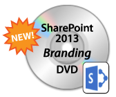 dvd_icon_branding2013new-18